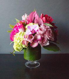 Pink Brilliance | Winston Flowers