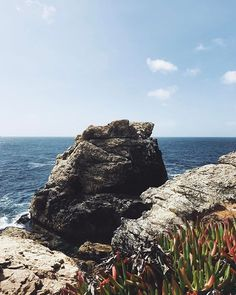 Happy 🐪 day! Here's a pretty rock for you. #montereylocals - posted by Tyreke White https://www.instagram.com/tyreke.white. See more of Big Sur at http://bigsurlocals.com
