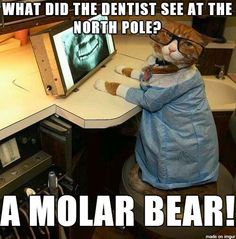Meet new cute dentist in Dentistry World. How many would you like to get dental treatment from cute dentist. Dental Hygiene School, Dental Life, Dental Assistant, Dental Health, Dental Hygienist, Dental Procedures, Oral Health, Dental Jokes, Dentist Humor