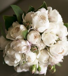Peonies and Rosebuds