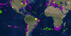 Revealing map shows the distribution of all known ocean trash