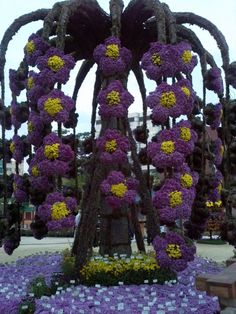 The 3rd Chrysanthemum Festival at Jogyesa (Temple)