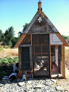 1000 images about our backyard chicken coop on pinterest for Gazebo chicken coop