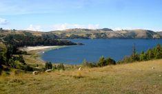 Risultati immagini per laguna de tota Water, Outdoor, Colombia, Beach, Gripe Water, Outdoors, Outdoor Living, Garden, Aqua