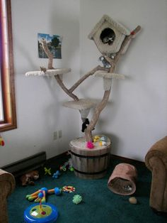 Need more pet-friendly decorating ideas? We can help - Sensibly Chic Designs for Life 704-608-9424 sensiblychic.biz.