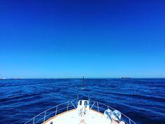 #grandbanks #boating #boatingwa #summer #sunny #rottnestisland #ocean #perth #nature #perthisok #perthlife #westernaustralia #holiday #christmasbreak #happy #blueskies #seeaustralia #explorewa #westisbest #getmeacocktail #christmas #festive #powerboat #boatlife #ship #yachting #lovemyrotto #thisiswa #rotto @grandbanksyachts by becca020 http://ift.tt/1L5GqLp