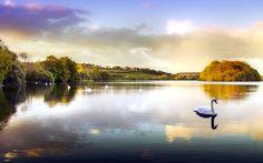 Lago dos Cisnes