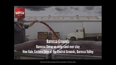 The Barossa Grounds project is an ongoing journey to investigate and articulate the diverse characteristics of the sub-regions of the Barossa Valley and their influence…