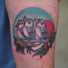 Image result for traditional tattoo birds