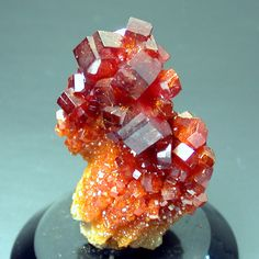libutron:  Red Vanadinite crystals on matrix | ©Webshop for mineral collectors Mibladen, Midelt, Morocco.