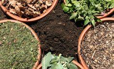 Kompost: Die richtigen Zutaten wählen