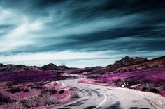 Infrared Photography by Zakaria Wakrim