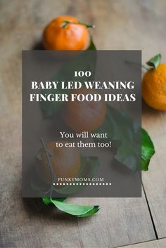 baby led weaning finger food
