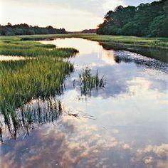 Edisto Island, South Carolina. Secret family getaway growing up. No stoplights, no hotels, no chains.
