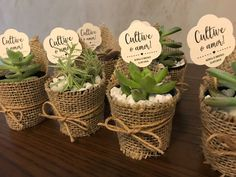 Wedding souvenirs, Wedding decorations, Souvenir i Wedding Favors And Gifts, Succulent Wedding Favors, Succulent Gifts, Wedding Favor Tags, Diy Wedding, Rustic Wedding, Cactus Wedding, Wedding Cards, Simple Weddings
