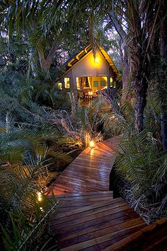 Abu Camp, Botswana >> I wish!