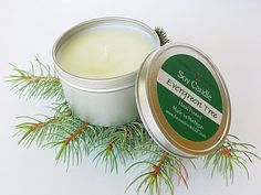Evergreen Tree holiday soy candle highly scented by AromaScentsLLC