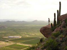 Bodega Chañarmuyo. Nuestros vinos de alta gama son una fiel expresión de la nueva viticultura argentina de altura. A 1.720 msnm, La Rioja, Argentina.