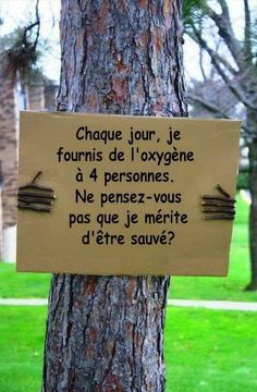 Sprüche/Motivation Trees help to slow climate change. They also improve air quality in urban areas. Don& cut down trees for a new home or for yet. Save Our Earth, Save The Planet, Our Planet, Save Mother Earth, Save Planet Earth, Our World, Salve A Terra, Bien Dit, Earth Day