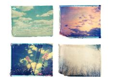 Polaroid Emulsion Transfers. shehitpausestudios.