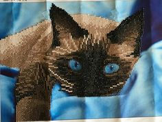 Finished Diamond Painting, Siamese Cat in Blue, Partial Mosaic, Round Rhinestones on Canvas by TheBlushinRose on Etsy Canvas Board, New Crafts, Dot Painting, Siamese Cats, Rhinestones, Mosaic, It Is Finished, Pets, Diamond