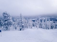 Bueatiful winter day  #winter #vinter #snow #snö #slalom #skiing