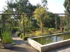 spejlbassin Vand, Bathtub, Garden, Standing Bath, Bathtubs, Garten, Bath Tube, Lawn And Garden, Gardens