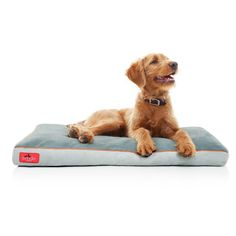 With a shredded memory foam interior that conforms to your dog's unique weight and sleeping habits to relieve arthritis, aching joints and hip dysplasia, this Brindle dog bed is a great gift for your dog.
