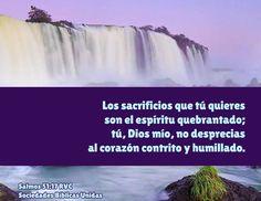 Salmos 51:17Reina-Valera 1960  Los sacrificios de Dios son el espíritu quebrantado; Al corazón contrito y humillado no despreciarás tú, oh Dios.