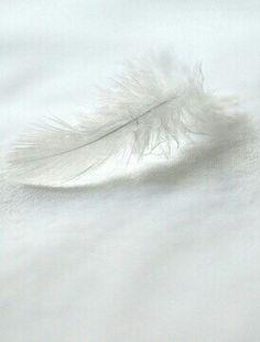 Angel sign.