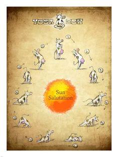 Yoga Cow Sun Salutation