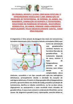 HIPODESENVOLVIMENTO DO PÊNIS DE CRIANÇA E INFANTIL COM DGH-HIPOGONADISMO by VAN DER HAAGEN via slideshare