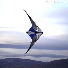 delta wing stunt kite - these things pick me up off the ground sometimes - fun!
