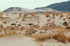 Desert #27 – Pampa