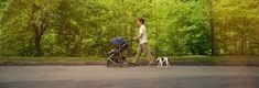 Best and Worst Strollers From Consumer Reports' Tests