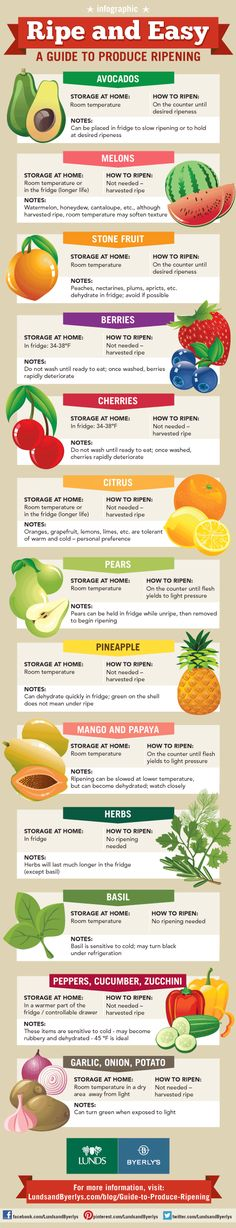 produce ripening infographic - how to ripen avocados, berries, stone fruit, peaches, plums, apricots, melons, cantaloupe, honeydew, watermelon, cherries, oranges, grapefruit, lemons, limes, citrus, mango, papaya, herbs, basil, pears, peppers, cucumbers, zucchini, summer squash, pineapple, garlic, onions, potatoes