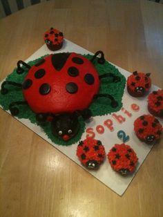 Lady bug cake/cupcakes