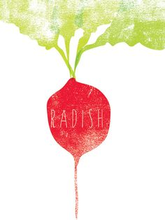 Red Radish graphic culinary art illustration door FowlerCreativeArts - Stephen & Ryan Fowler
