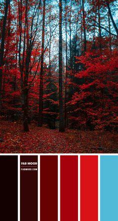 Color Schemes Colour Palettes, Red Colour Palette, Plum Colour, Light Red Color, Pantone Colour Palettes, Orange Color Palettes, Light Blue, Color Harmony, Color Balance