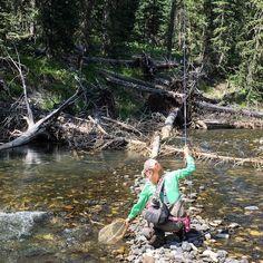 Nothing but net on Pebble Creek Yellowstone National Park. #yellowstonenationalpark #utahoutdoors #montanaflyfishing #flyfishingaddict #flyfishing