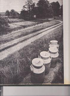 1975 - boerderij de Rozenhof - Nesserdijk