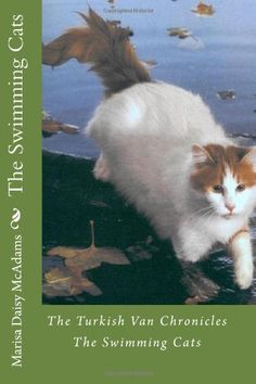 The Swimming Cats: The Turkish Van Chronicles by Marisa Daisy McAdams. Turkish Van Cats, Siberian Forest Cat, Cat Magazine, Horses And Dogs, Cat People, Cat Breeds, Crazy Cats, Swimming, Kitty