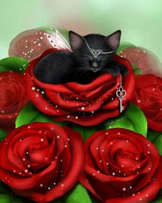 Cat Care Top Tips And Advice. All these things you get as a cat owner. I Love Cats, Cute Cats, Animals Beautiful, Cute Animals, Chat Rose, Kitten Images, Image Originale, Cute Animal Drawings, Cat Drawing