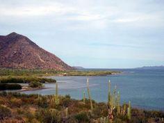 Bahía Concepción, on the Cortez coast of Baja California Sur in Mexico. http://bajabybus.com/our-tour/6