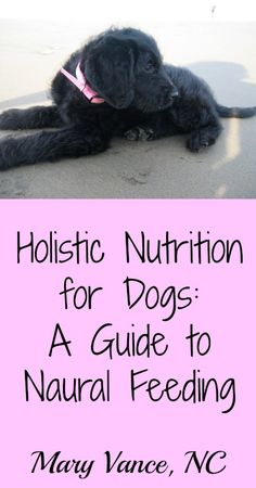 How to feed your dog a natural diet.--Mary Vance, NC