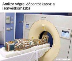 Famous Memes, Best Memes, Funny Memes, What Meme, Original Memes, Meme Maker, Everything Funny, Meme Lord, Philips
