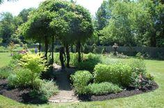 Växt-ö med trädtunnel