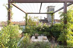 Green Box, Go Green, Terrace Garden, Atrium, Cozy House, Trellis, Landscape Design, Instagram, Plants