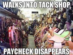 True Story! #funny #horse #tack