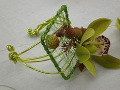 aluminum wire caging with a green cymbidium orchid